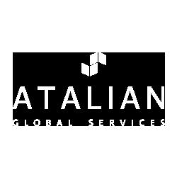 ASG flip logo